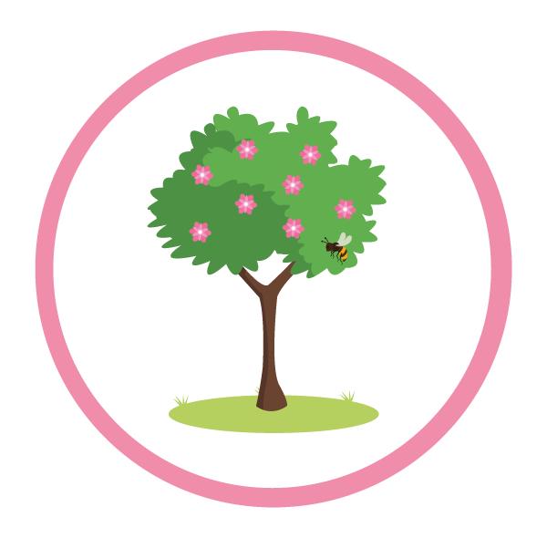 alberi interesse apistico