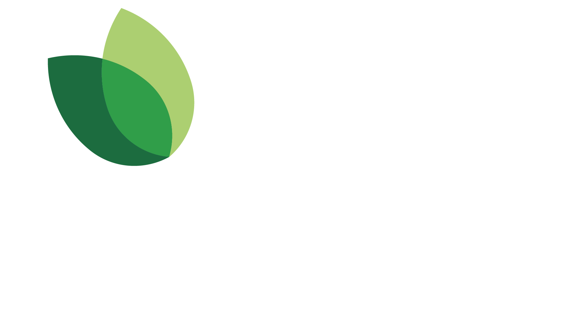 Logo beLeafing.com